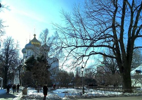 Светлый день в Новодевичьем