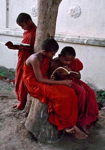 мальчики-монахи